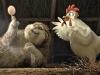 duck-duck-goose-22