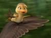 duck-duck-goose-27